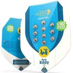 Fast Eddy Automatic CBD Royal Queen Seeds